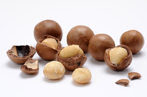 「マカダミアナッツ」の画像検索結果